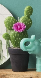 Ombre-Home-Summer-Love-Cactus-Candle on sale