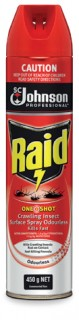 Raid-Commercial-Insecticide-Surface-Spray-450g on sale